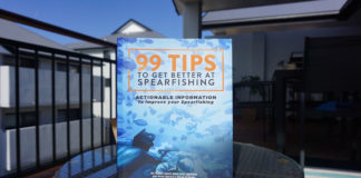 New Spearfishing Book Released
