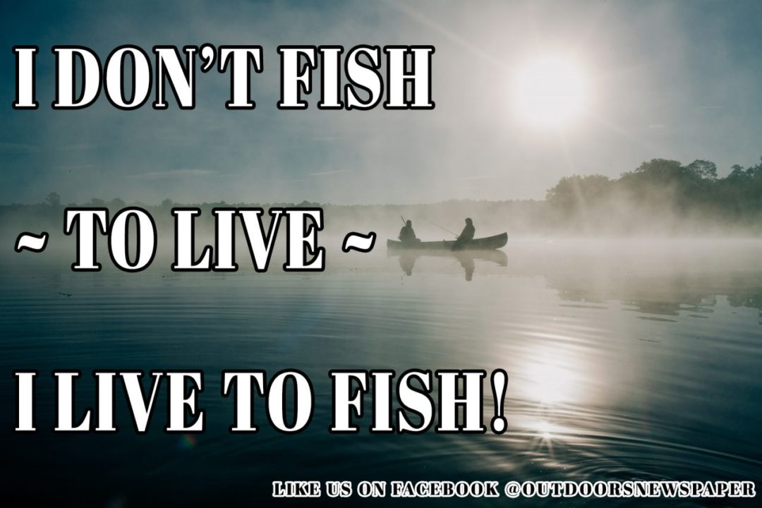 Outdoors Meme - I don't live to fish - I fish to live!