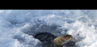 Video: Ice Fishing Tips and Gear for Beginners | Outdoor Newspaper