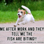 Fishing Meme: Me After work and they tell me the fish are biting!