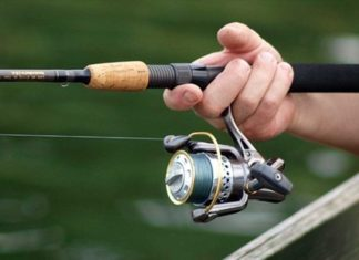 Pro Guide to Picking The Right Spinning Reel