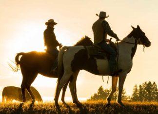 Range Rider Program to reduce Mexican wolf depredations on livestock | Outdoor Newspaper
