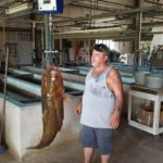 Pictured: Lavon Nowling Florida fisherman New Florida State Record Flathead Catfish (Photo courtesy - FWC)