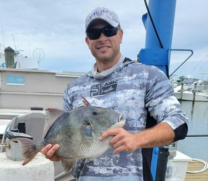 Angler Catches Maryland Record Gray Triggerfish | Outdoor Newspaper