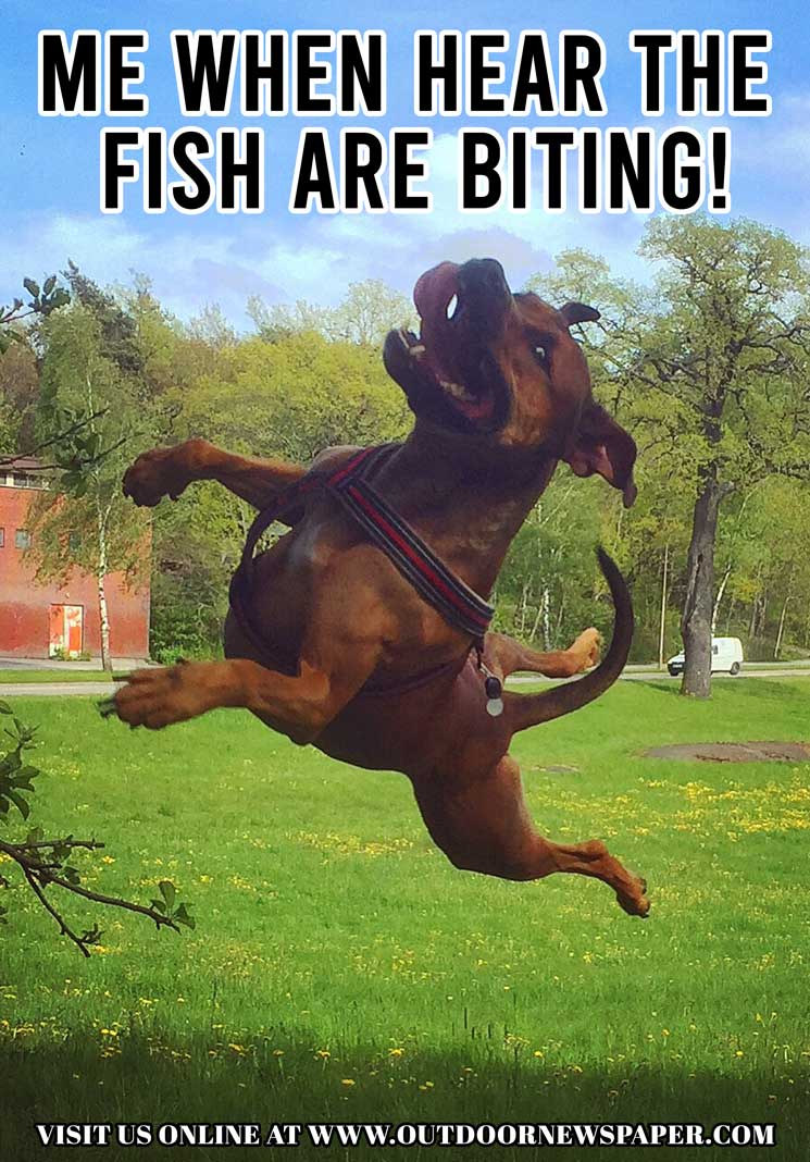 Fishing Meme Outdoors Meme: Me When I Hear That The Fish Are Biting