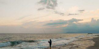 Texas Coast Winter Weather Fish Kill